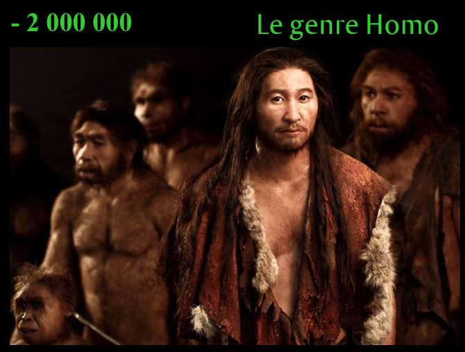 - 2 000 000 le genre Homo (Homo sapien, homo neanderthalensis, homo abilis, Homo erectus)